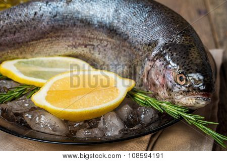 Fresh Trout On Plate With Ice