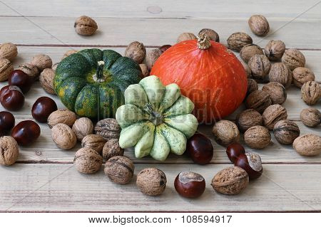 Still Life With Products Of Autumn - Pumpkins, Gourds, Nuts, Chestnuts