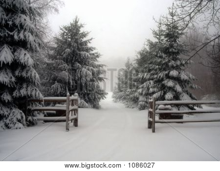 Entry Gates With Snow