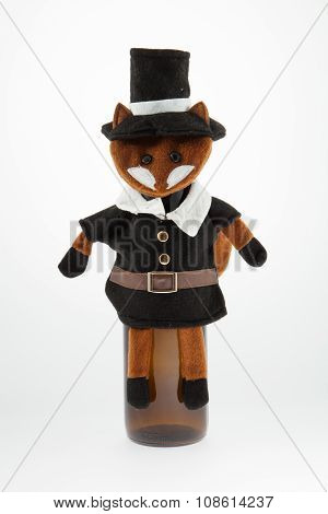 Foxy Pilgrim