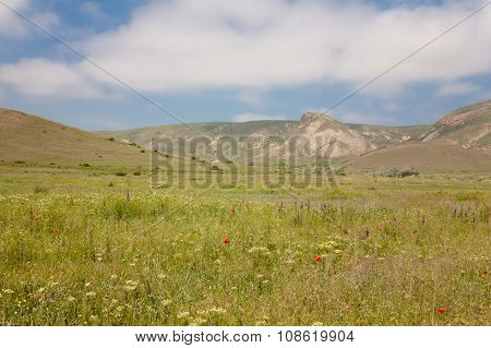 Mountains And Meadow