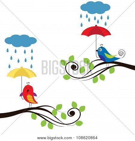 Birds With Umbrellas