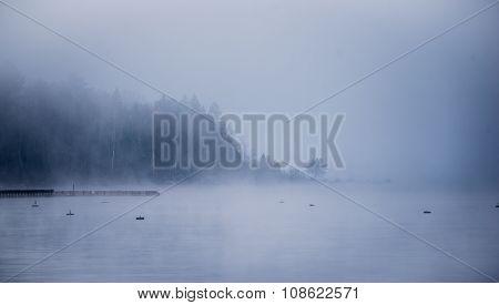 Heavy Fog shrouding peninsular forest - mist rising from water.