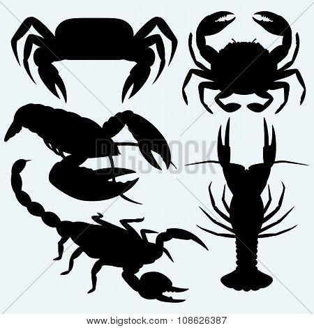 Set crustaceans