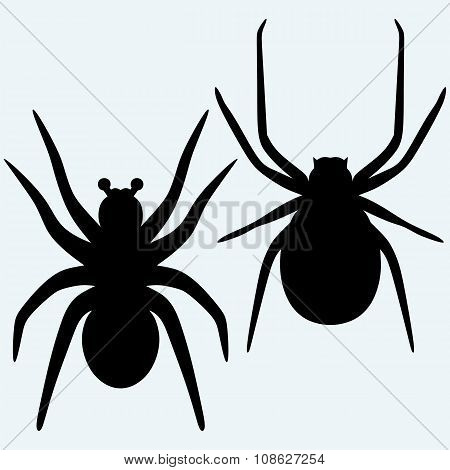 Set spider icon. Top,side and front view