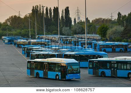 Budapest City Buses In A Center Garage.
