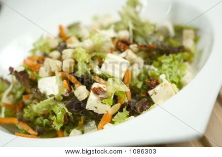 Salad Tilted Left