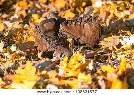 Hiking Boots, Well Worn And Muddy On The Forest Floor.
