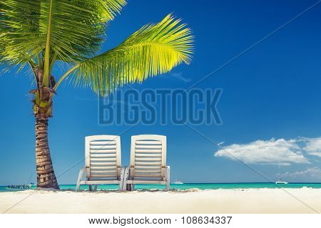 Tropical Island And Exotic Beach