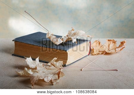 Old Book With Yellow Maple Leaves Closeup