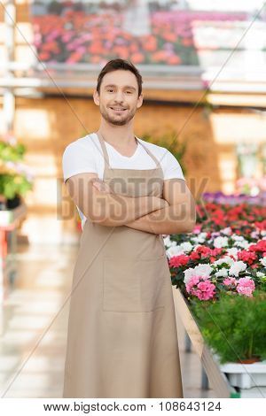 Handsome flower seller involved in work