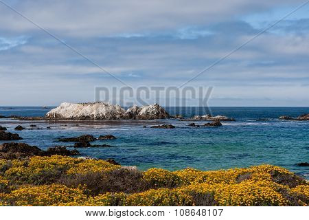 Bird Rock At 17 Mile Drive