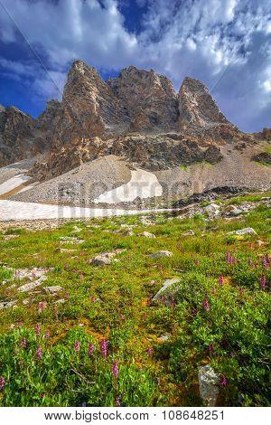 Awe Inspiring Grand Teton Landscape