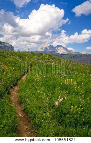 Grand Teton Scenic Hiking Path
