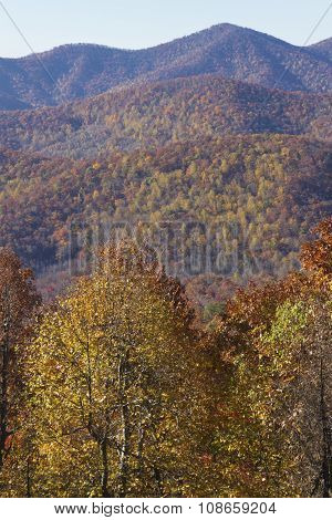 Appalachian Moutains Palette Of Fall Color