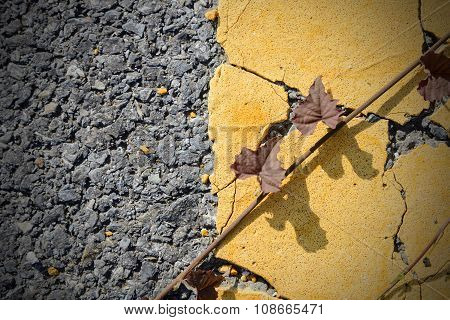 Asphalt road with yellow strip
