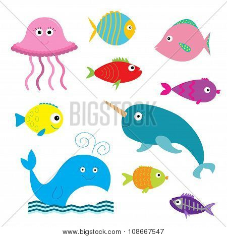 Sea And Ocean Animal Set. Isolated. Fish, Jellyfish, Narwhal, Whale, X-ray Fish. Baby Background. Fl