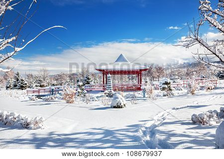 Winter Japanese Garden In Almaty