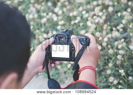 Man Taking Picture Of A Flower