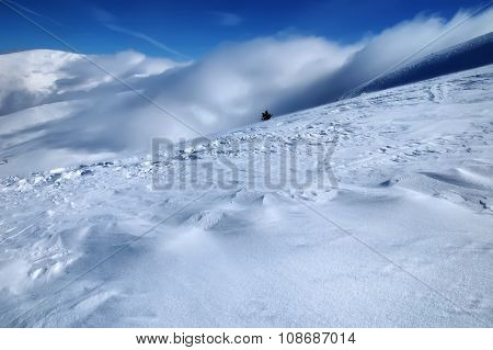 Winter Mountain Landscape. Snowstorm In Evening Light (ukraine Carpathian, Svydovets Range)