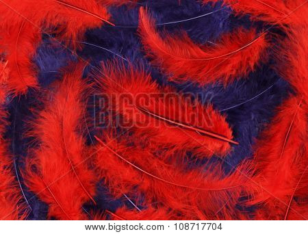 Background - small red, blue plumes situated irregularly