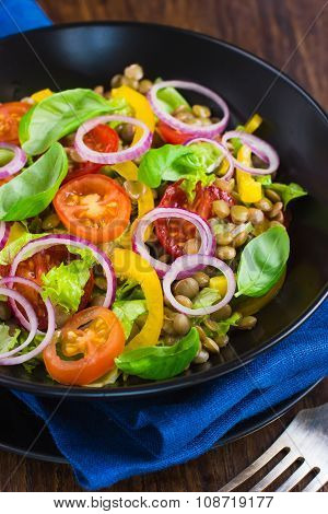 Salad With Lentil, Tomatoes, Bell Pepper And Red Onion