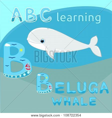 Baby beluga whale vector illustration Cute cartoon white whale vector Sea mammal vector Sea animal c