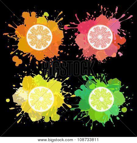 fruit splash with lemon, lime, orange, grapefruit