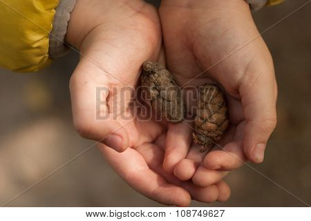 Two Bumps In The Hands Of A Child. Soft Focus