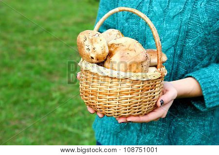 Woman holding basket of mushrooms