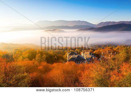 Autumn Scenery Up Early With Fog In Zagorochoria, Epirus Greece