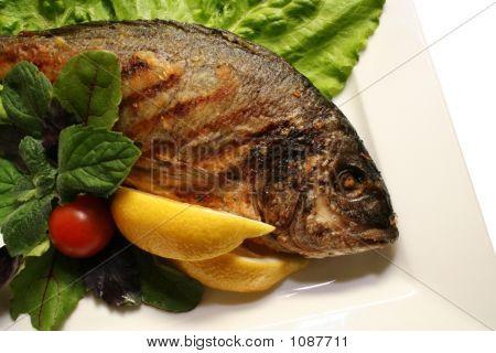 Grill A Fish