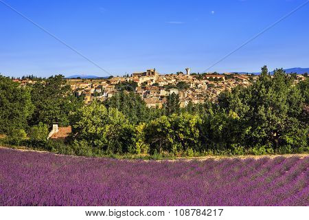 Valensole Village And Lavender. Provence, France