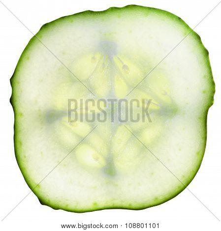 Round Slice Of Fresh Cucumber Isolated On White