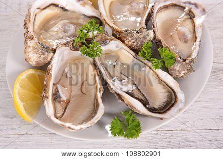fresh oyster for dinner