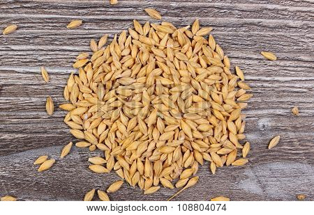 Heap Of Barley Grain On Wooden Background