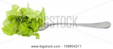 Fork With Impaled Fresh Green Lettuce Isolated