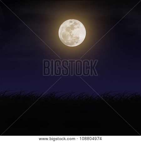 Beautiful Full Moon And Silhouettes Grass At Night