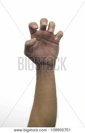 Human Hand Scratching - Grabbing gesture