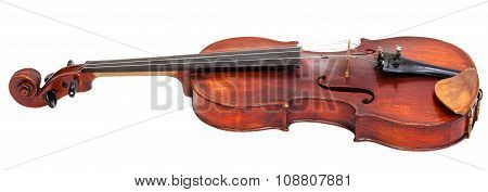 Side View Of Full Size Violin With Wooden Chinrest