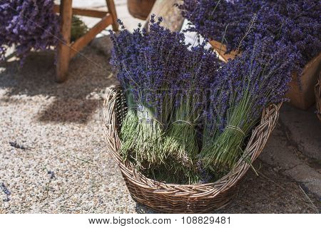 Lavander In Basket
