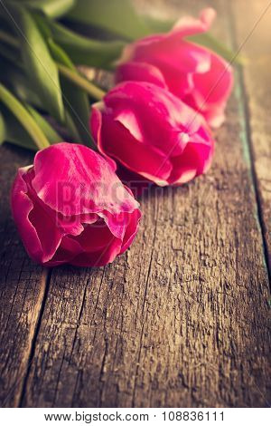 Three Pink Tulips On Wooden Table, Toned