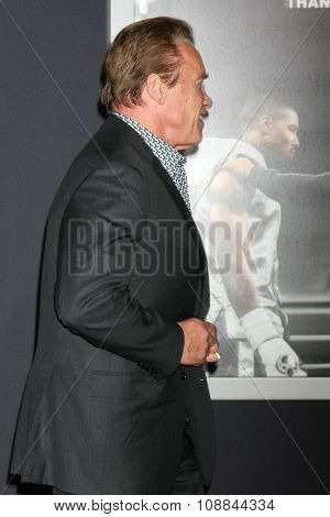 LOS ANGELES - NOV 19:  Arnold Schwarzenegger at the