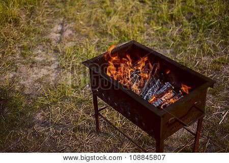 barbecue in forest
