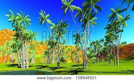 Oncosperma tigilarium - nibung palm trees