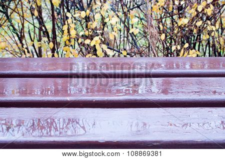 Wooden Bench Close-up With Puddles After A Rain