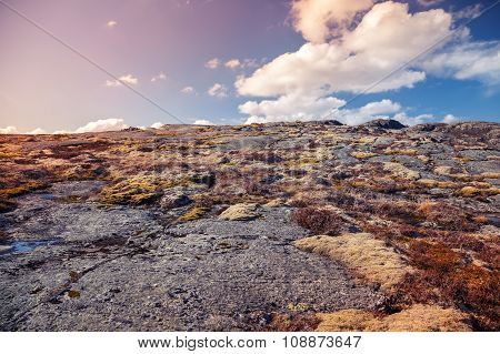 Spring Norwegian Mountain Landscape With Rocks