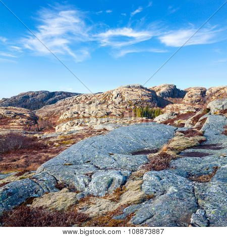 Norwegian Landscape With Red Moss On Rocks