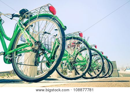 New green bicycles lined up on the road