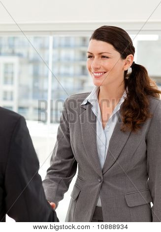Businesswoman Shaking Hands With A Businssman